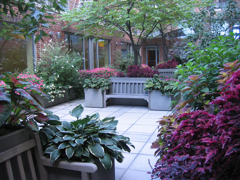A common space garden patio with spring planting and trees in bloom