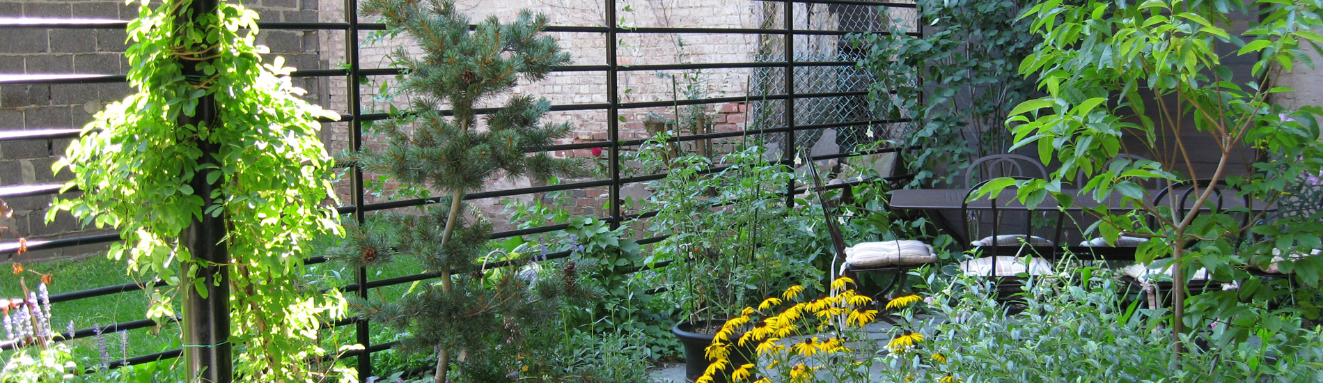A photo of a private backyard garden in Greenpoint NYC